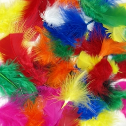 Short Marabou & Quill Feathers