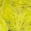 Yellow Craft Feathers